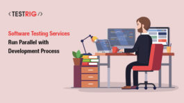 software testing services, software testing company