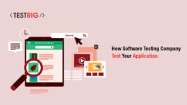 Best Software testing company