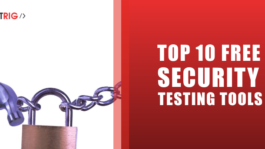 Security Testing Tools,Security Testing company,Security Testing